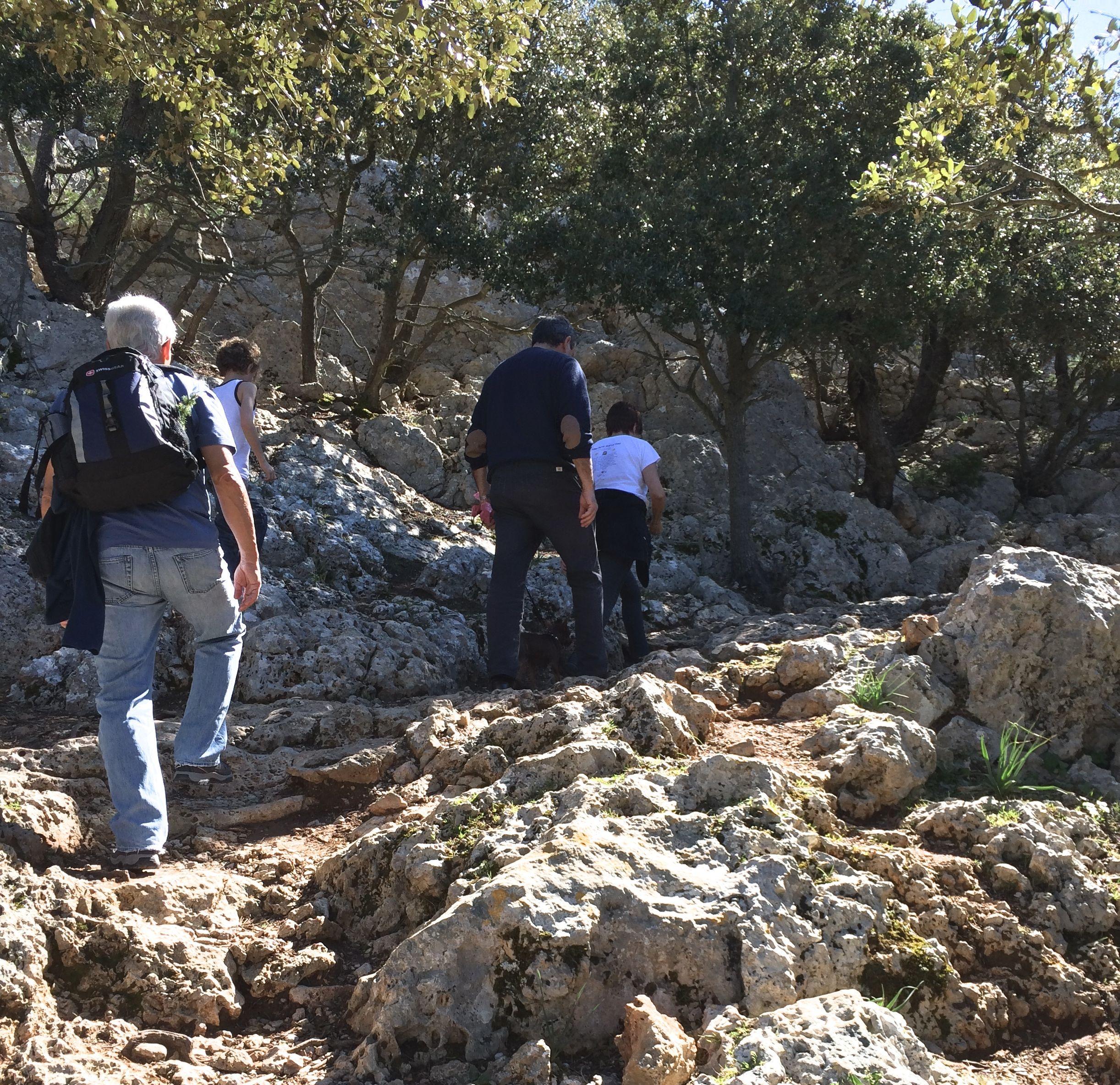 Hiking Alaró